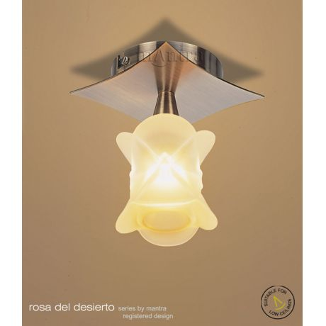 Shop by style modern lighting modern ceiling lights flush rosa del desierto 1 light semi flush ab aloadofball Images